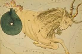 Horoscope annuel amour Capricorne