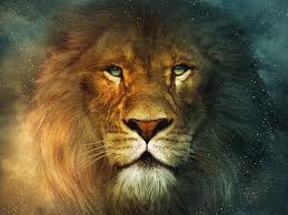 Horoscope 2014 homme Lion